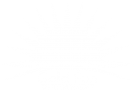 Gold Fun Entertainment